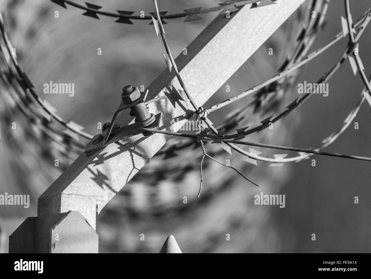 Security fence with razor wire - Stock Image