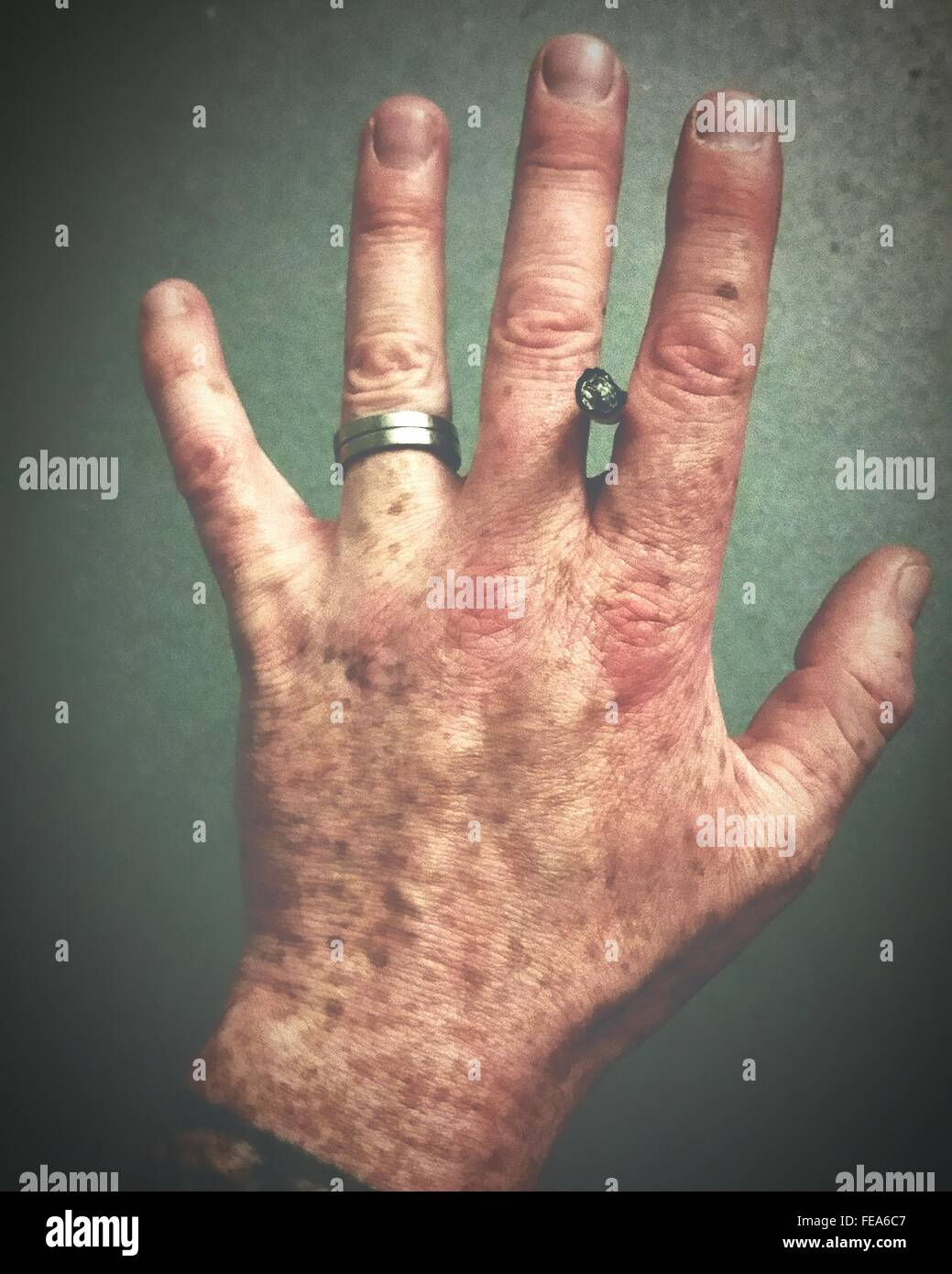 Close-Up Human Hand - Stock Image