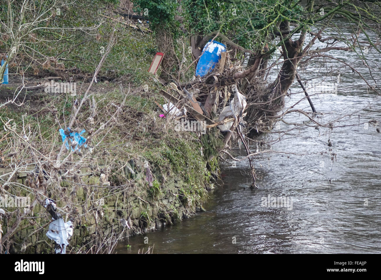 Flood residue and litter in the trees on the river Calder, B6112, Stainland Rd, Halifax, West Yorkshire HX3 9EQ. Stock Photo