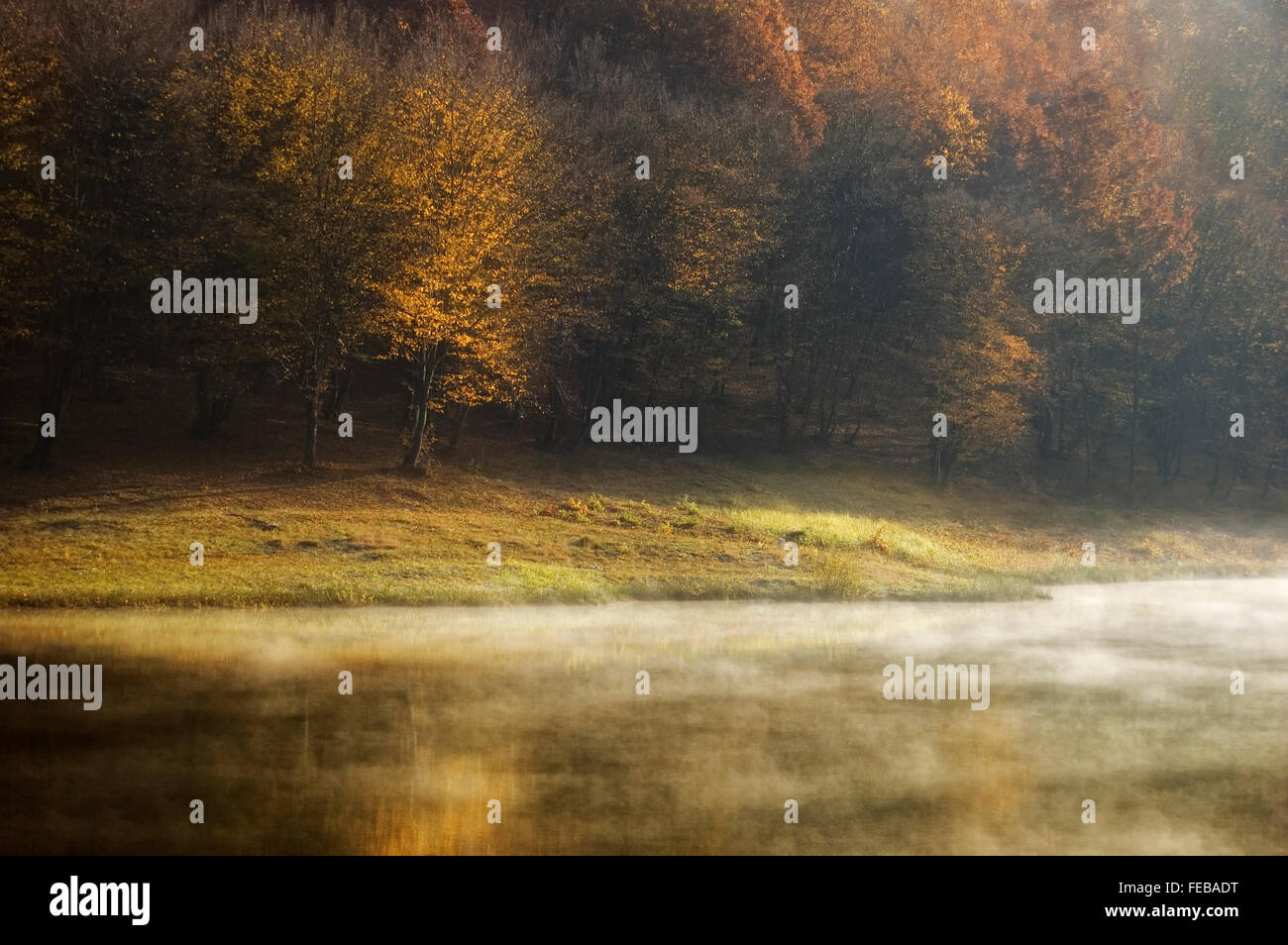 autumn morning at a forest lake with fog rising and warm colors - Stock Image