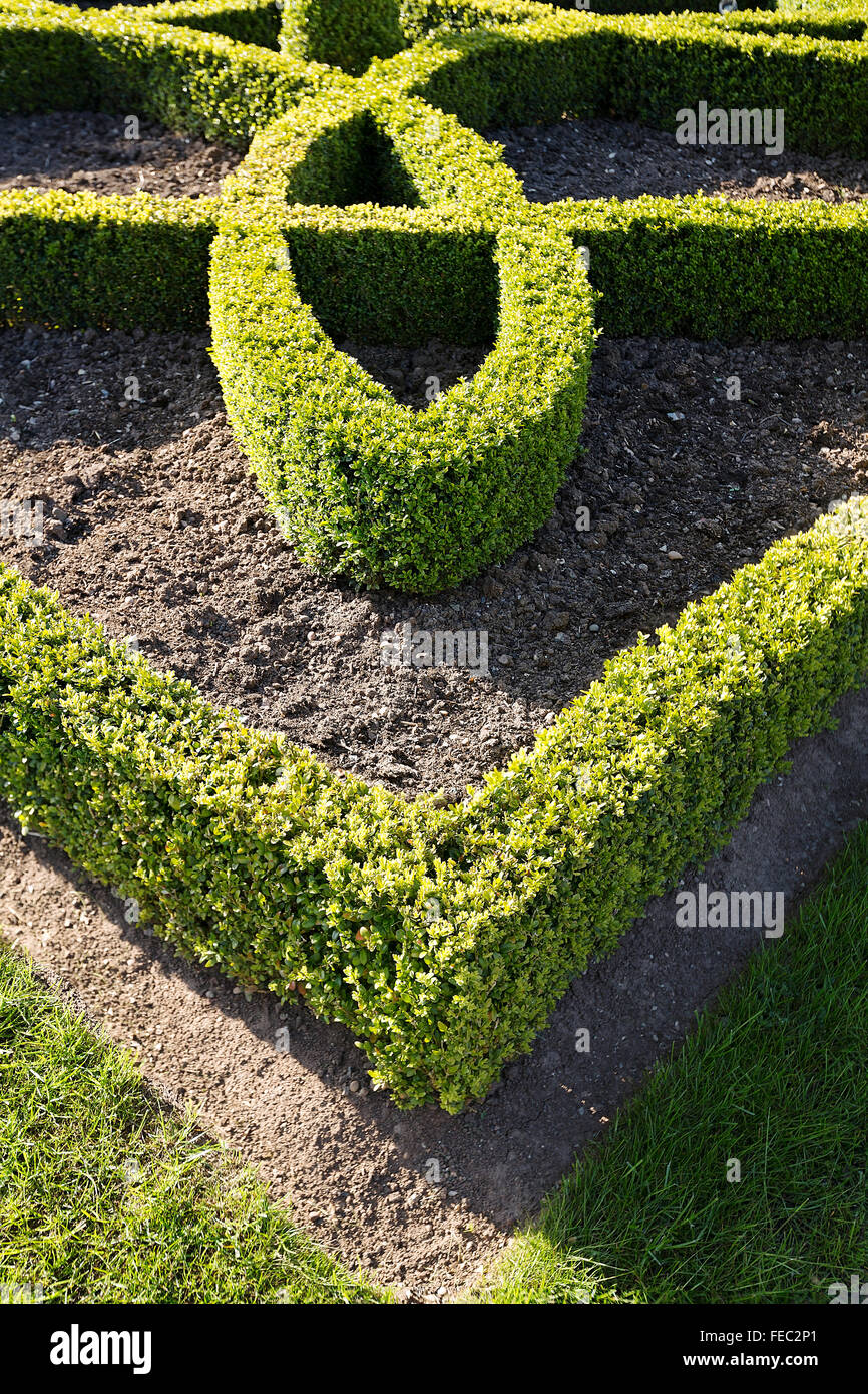 Box topiary hedging in April in Stratford upon Avon, England. - Stock Image
