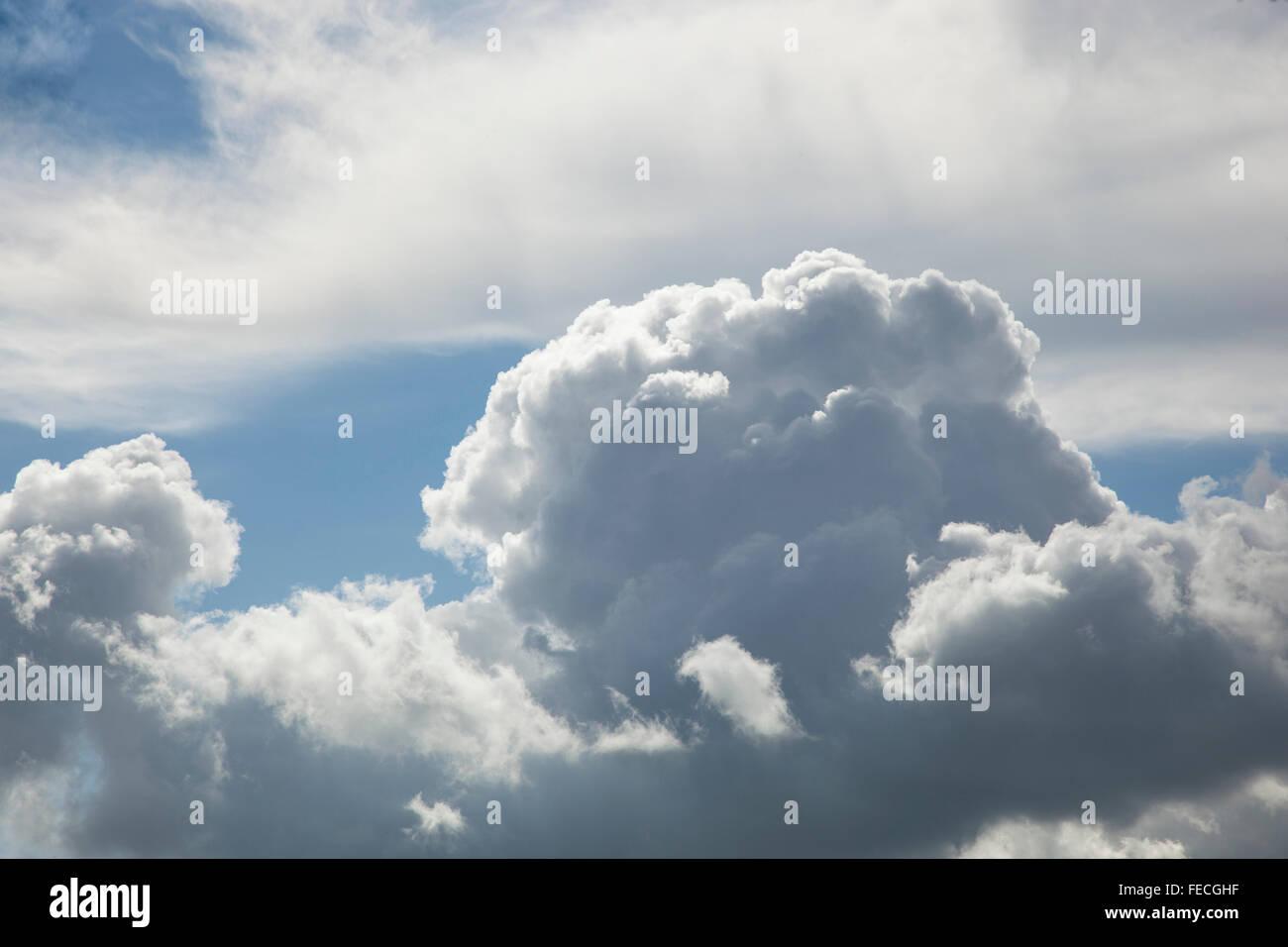 Building Cumulonimbus Cloud in summer - Stock Image