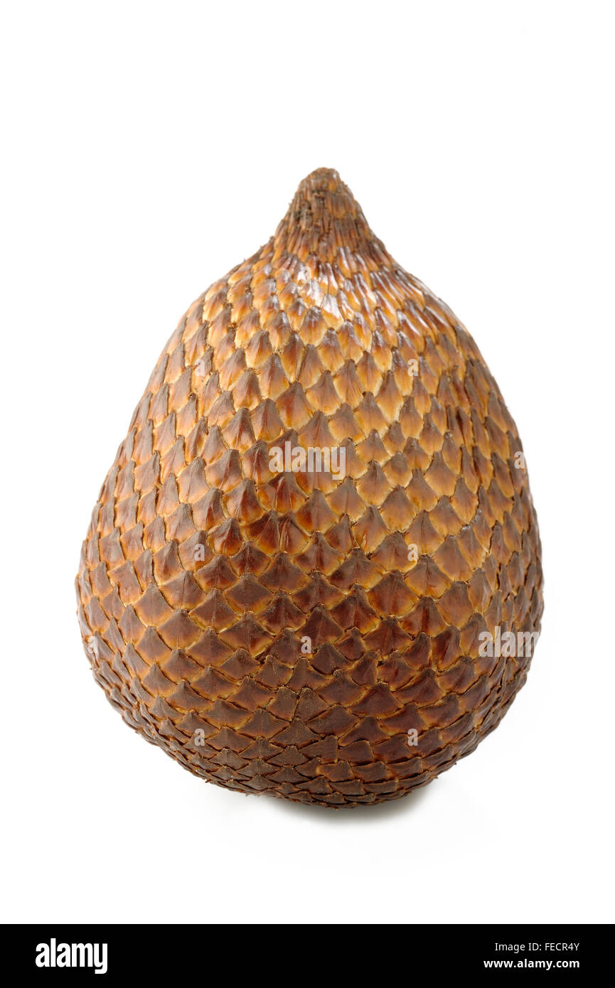 salak bali fruit on white background - Stock Image