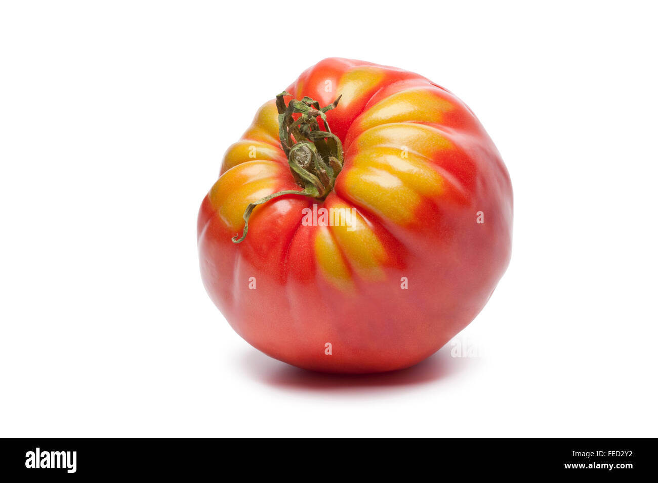 Fresh single Coeur de Boeuf tomato on white background - Stock Image