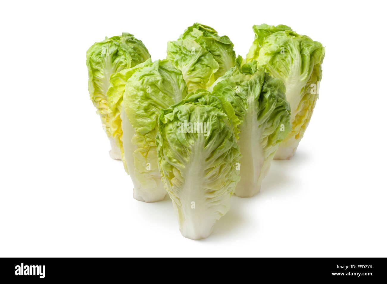 Fresh Baby gem lettuce on white background - Stock Image