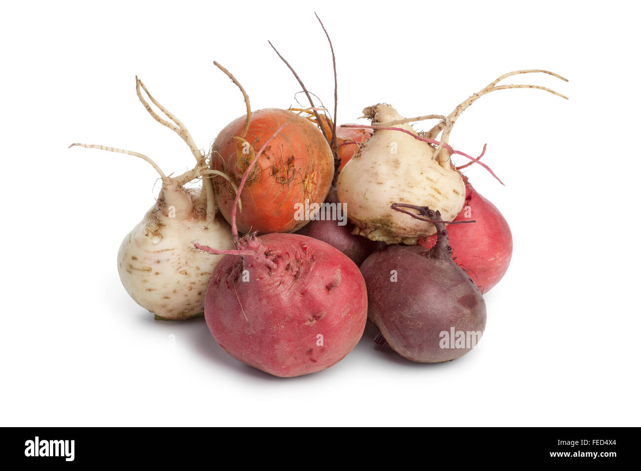 Fresh mixed heirloom color beets on white background - Stock Image