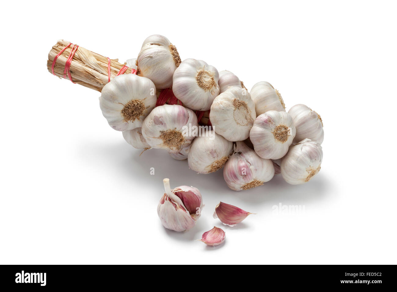 String of garlic bulbs on white background - Stock Image