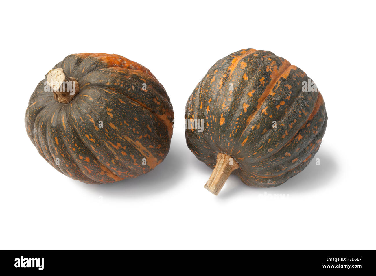 Two fresh butter pumpkins on white background - Stock Image