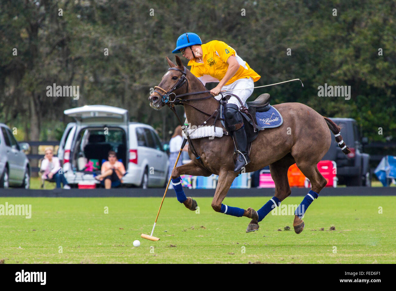 Polo match at Sarasota Polo Club at Lakewood Ranch in Sarasota Florida - Stock Image