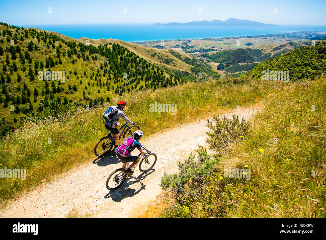 Mountain bikers on Campbell's Mill Road above Whareroa Farm Park North Island New Zealand with view to Kapiti - Stock Image