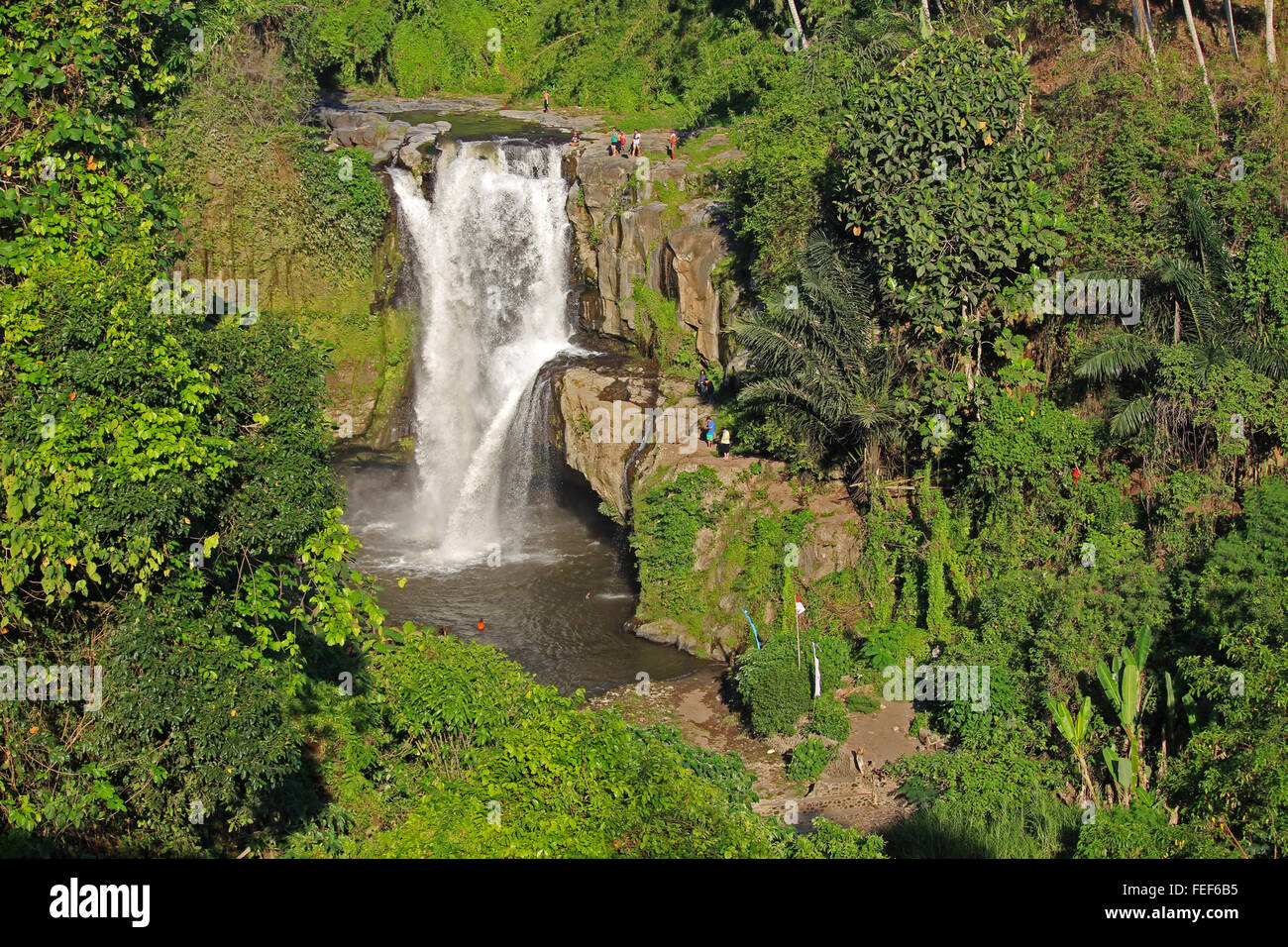 UBUD/INDONESIA - CIRCA NOVEMBER 2015: Amazing Tegallalang waterfall surrounded by green forest in Bali - Stock Image