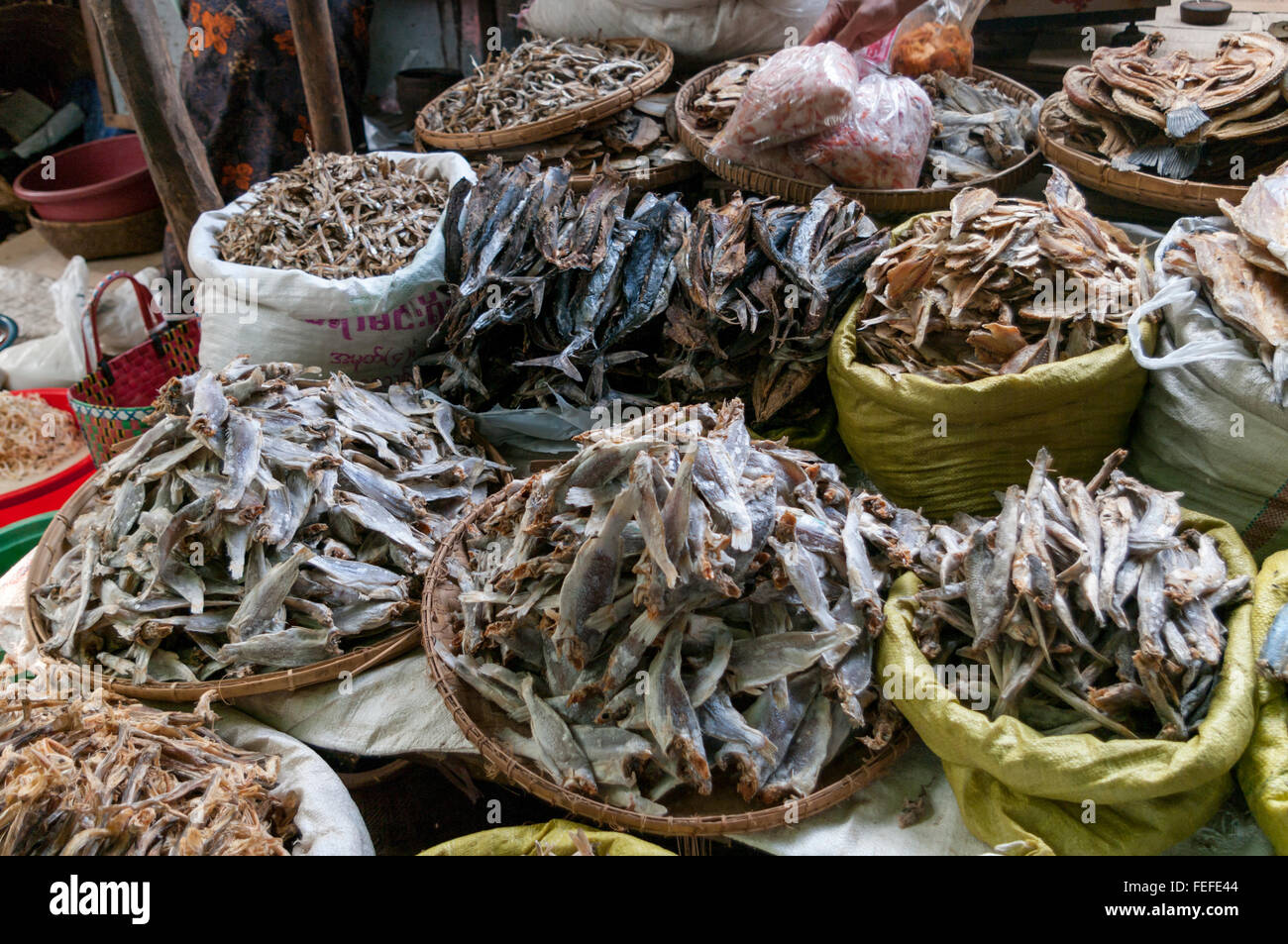 Market stall with different kinds of dried fish. Nyaung U (Bagan), Mandalay Region, Myanmar. - Stock Image