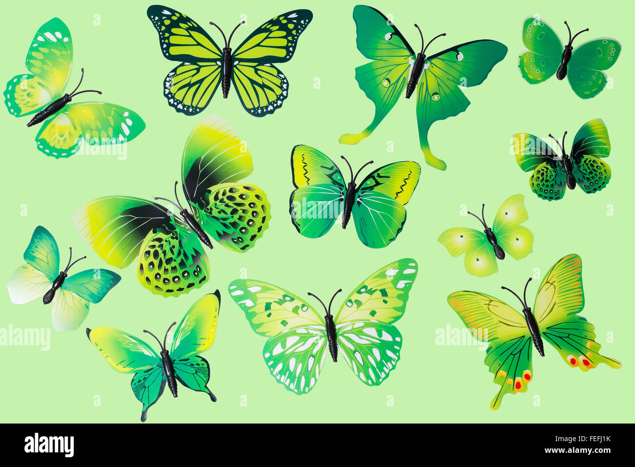 Collection of Green Fantasy Butterflies Clip Art Isolated - Stock Image