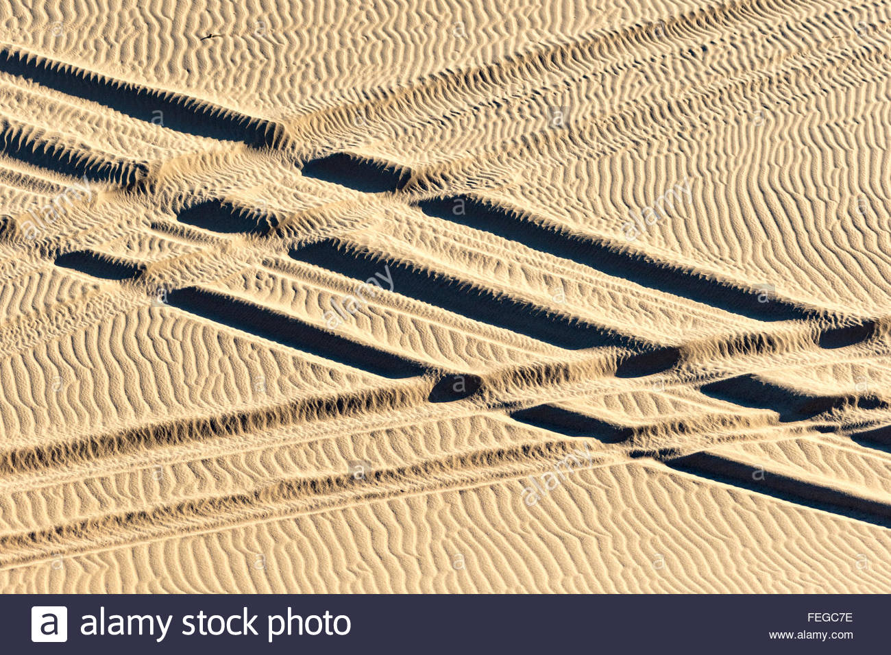 ATV tracks criss-cross in the sands forming an X - Stock Image
