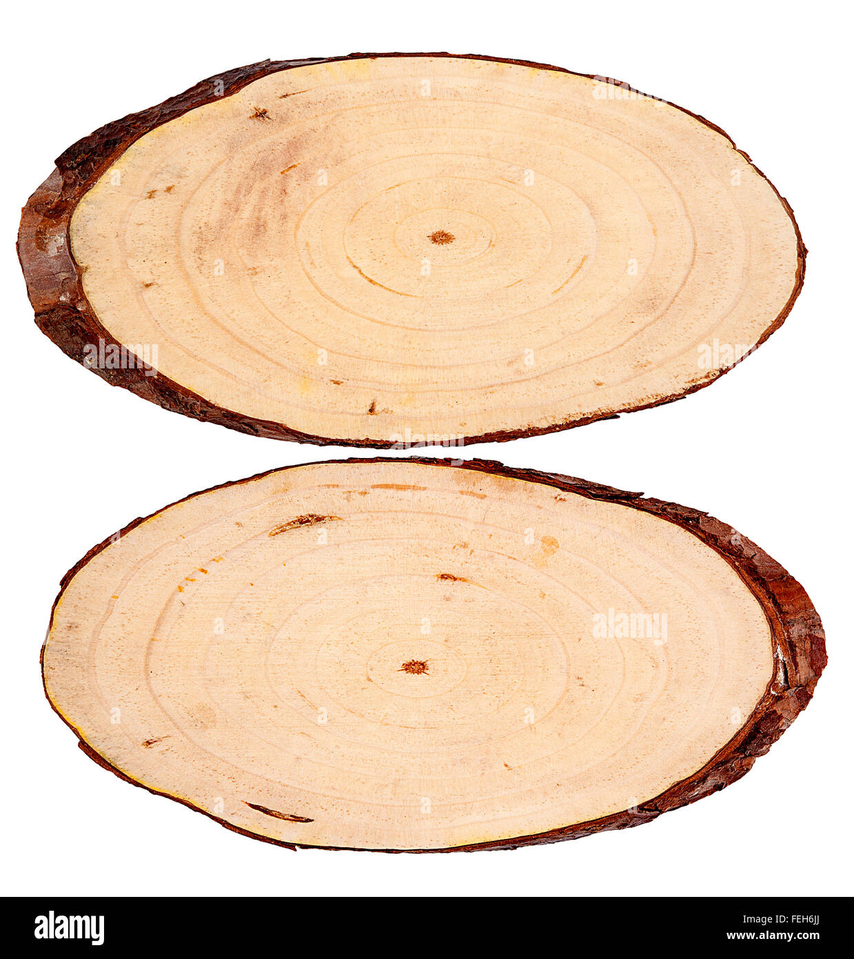 Round cut down tree with annual rings texture background - Stock Image