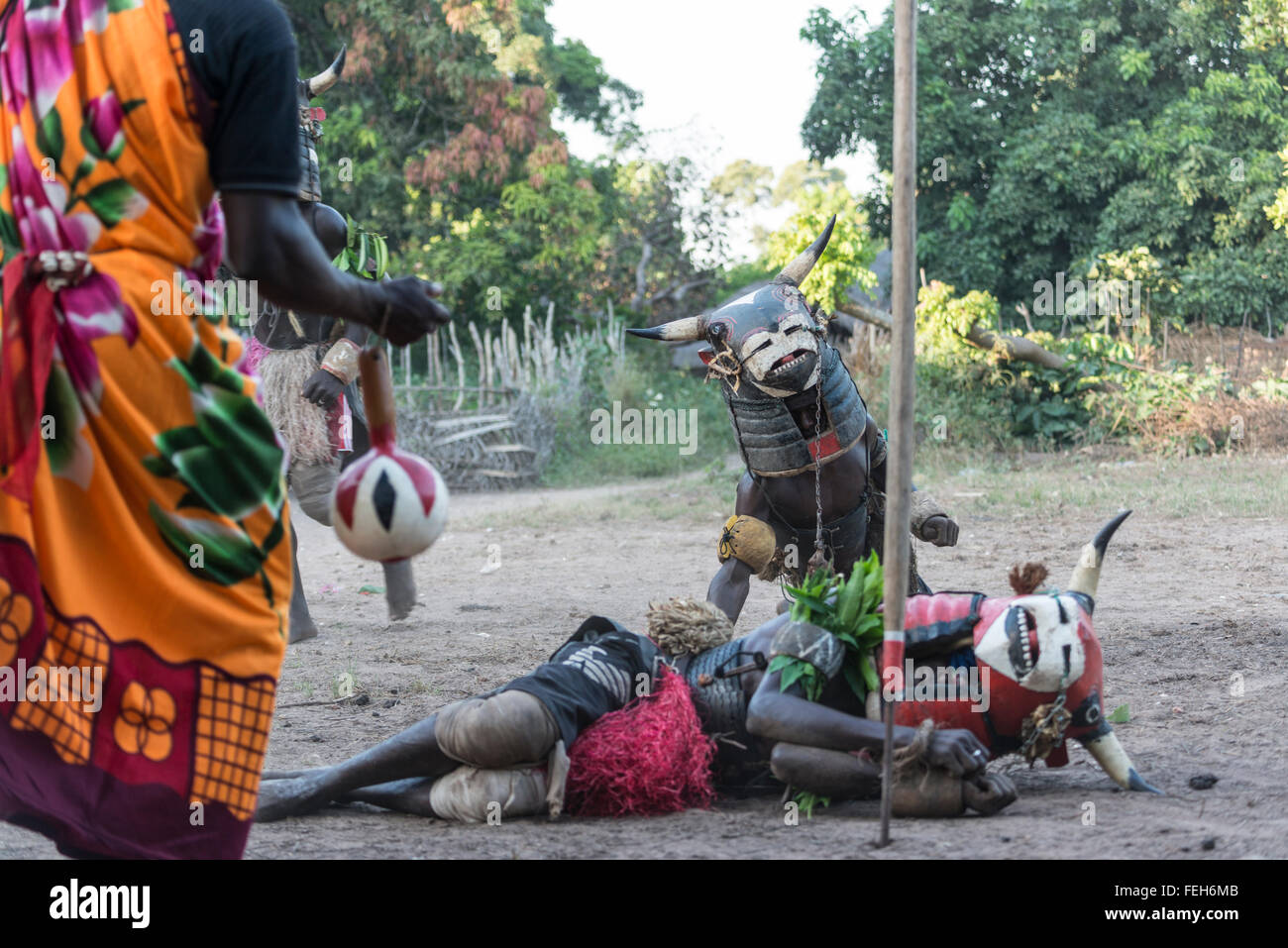 Performers in the vaca bruto initiation ceremony in the village of Agande on Uno island on the Bijagos peninsula, - Stock Image