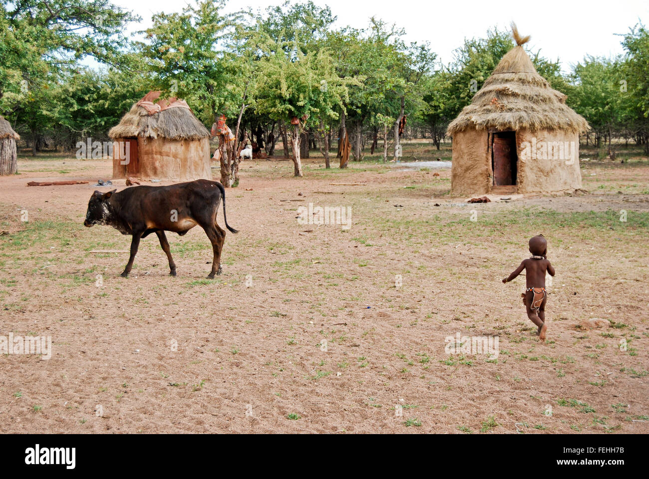 Himba village with traditional hut near Etosha National Park in Namibia, Africa - Stock Image