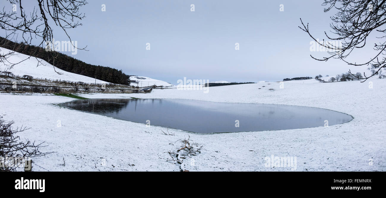 Rain forms a floodwater pond in a frozen snowy field at Crookedshaws, Scottish Border Cheviot foothills near Yetholm Stock Photo