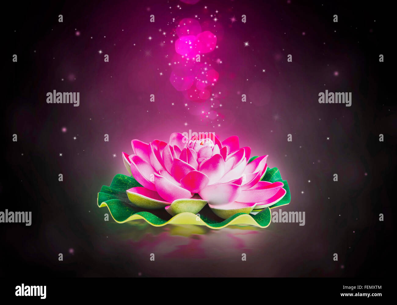 Lotus flower wallpaper stock photos lotus flower wallpaper stock dreamy magic lotus flower with sparkle in the water stock image mightylinksfo