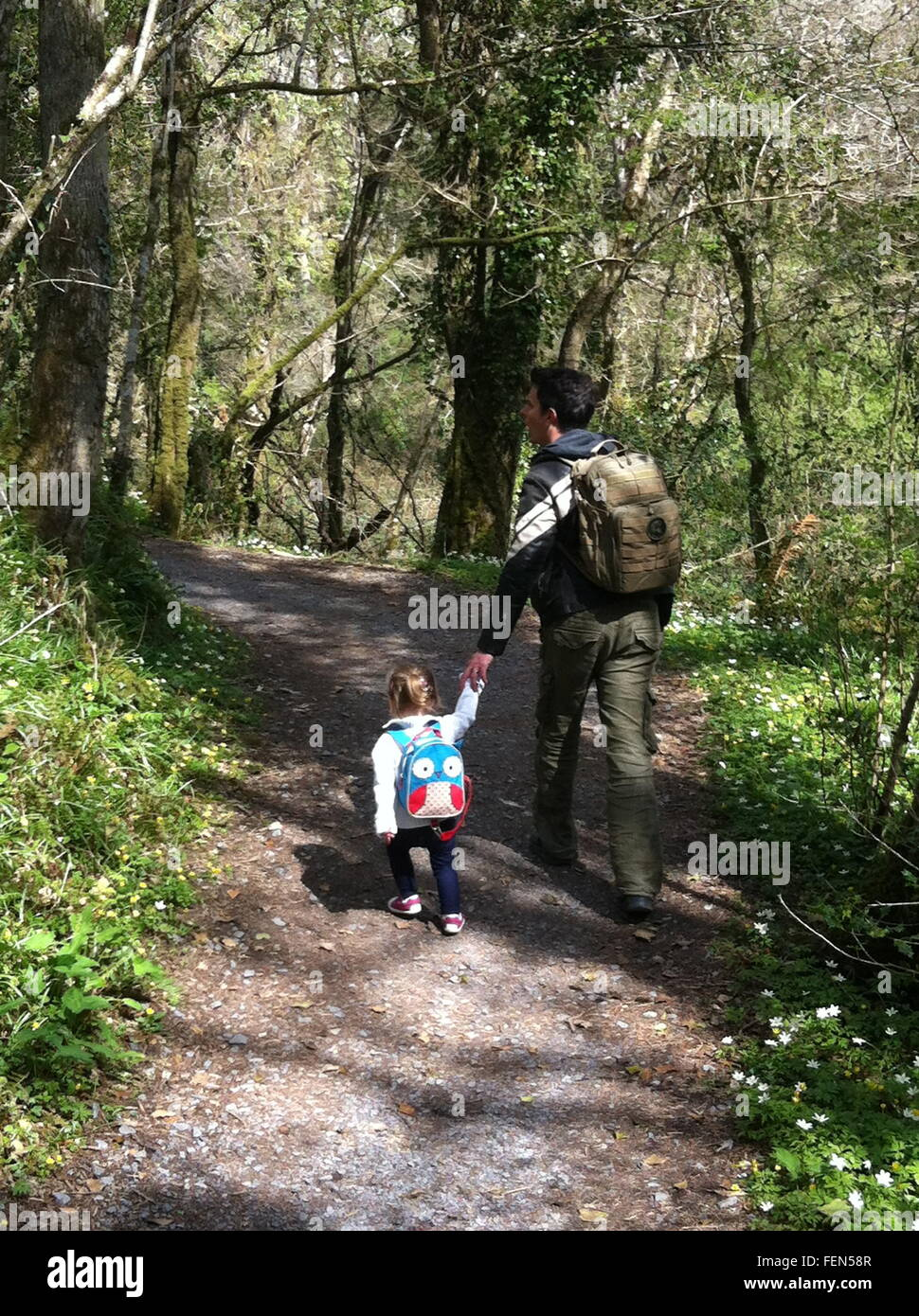Full Length Rear View Of Father And Daughter Walking In Forest With Backpack - Stock Image