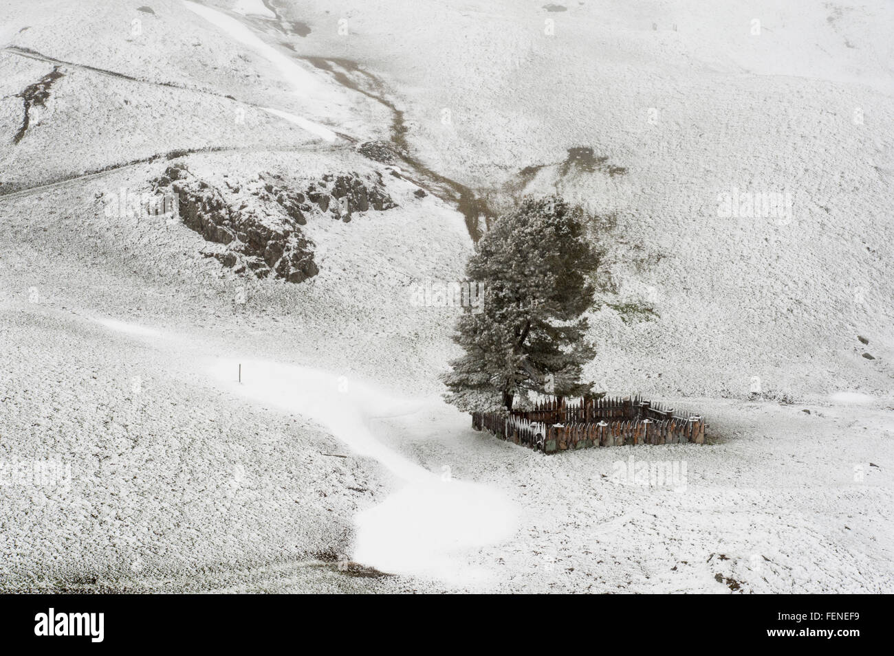 Julierpass, Winter, Schnee, Kanton Graubünden, Alpen, Schweiz    Julier Pass, winter, snow, Graubünden, - Stock Image