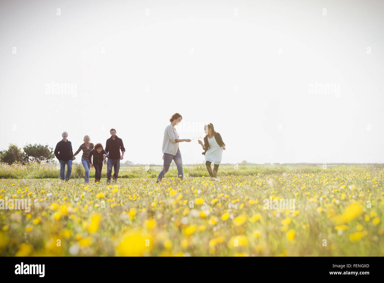 Multi-generation family walking in sunny meadow with wildflowers - Stock Image