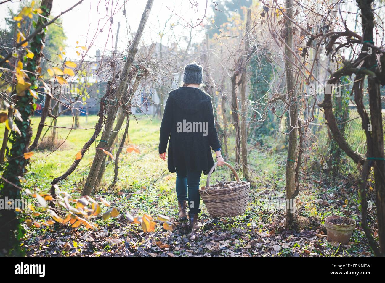 Full length rear view of young woman in garden walking among trees carrying wickerwork basket - Stock Image