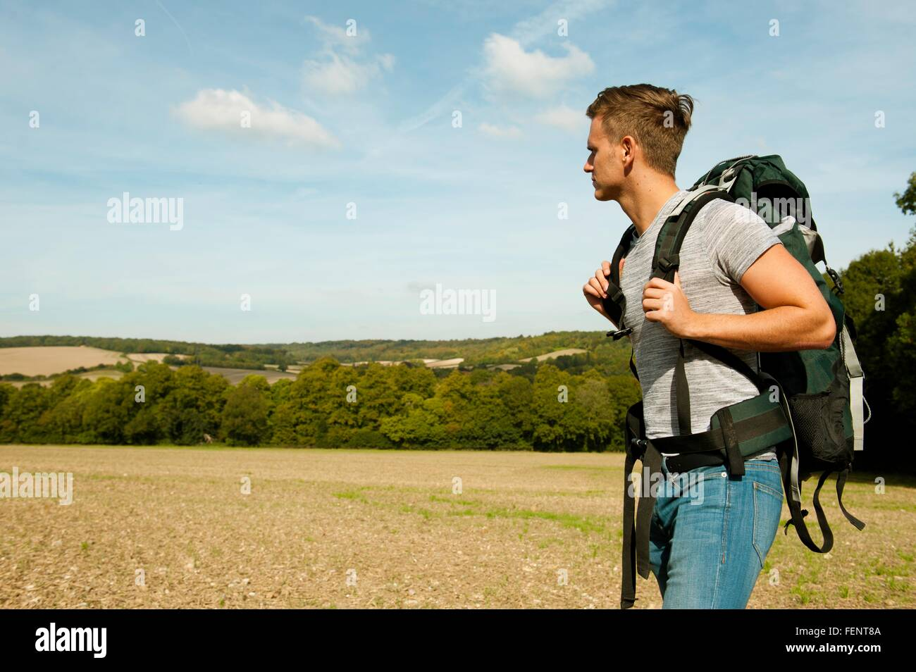 Young male hiker in field landscape, Great Missenden, Buckinghamshire, U.K - Stock Image