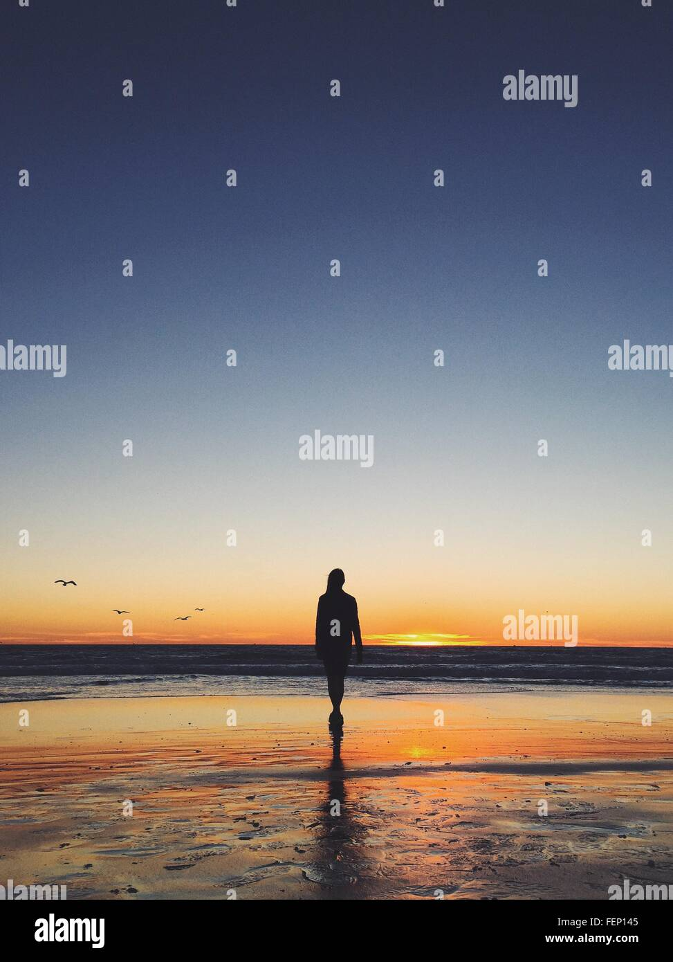 Rear View Of Woman Walking On Beach During Sunset - Stock Image