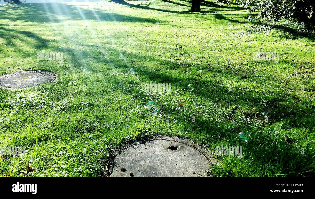 Sewer Drains In Grassy Field - Stock Image