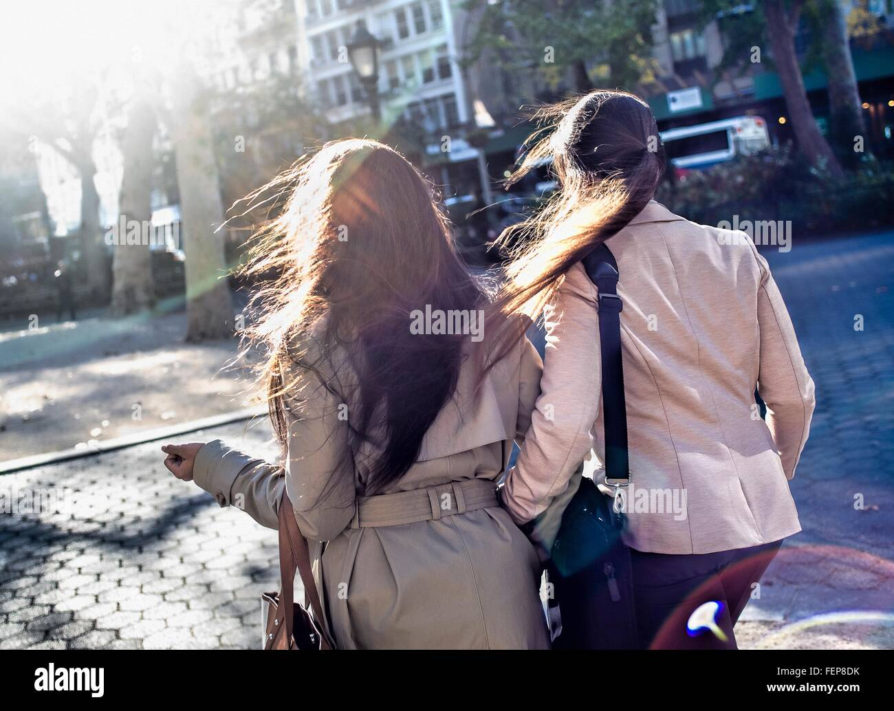 Rear view of young adult female twins walking through city park - Stock Image