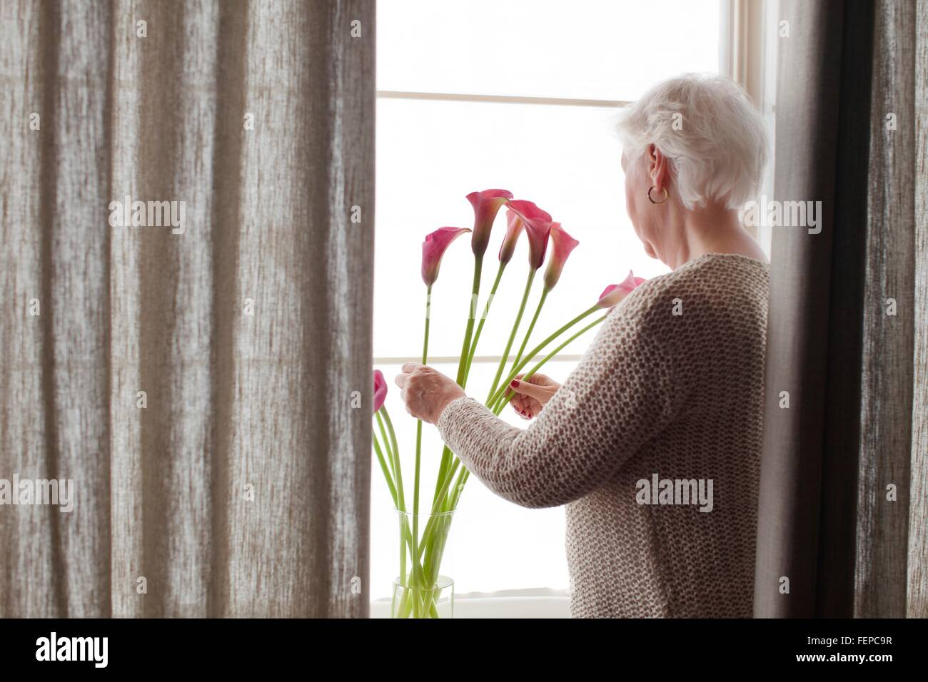 Senior woman arranging flowers in vase, rear view Stock Photo