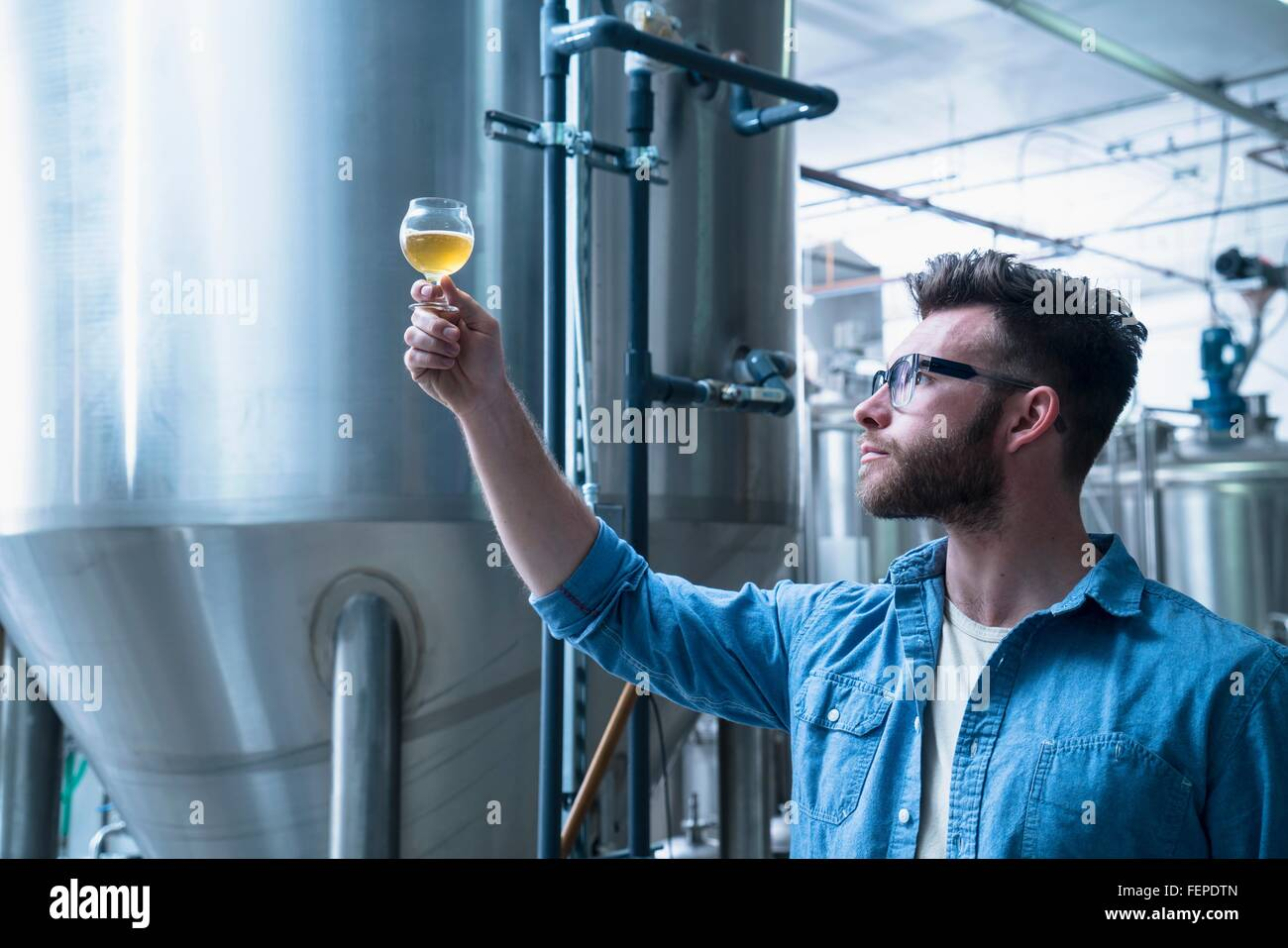 Young man in brewery holding up glass of beer, checking quality - Stock Image