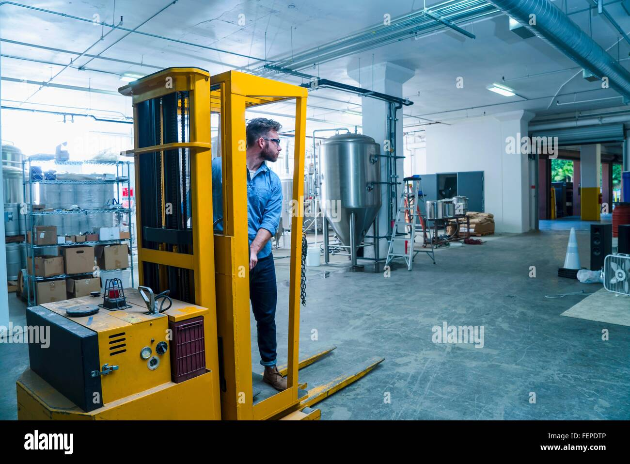 Young man in brewery driving forklift truck, looking away - Stock Image