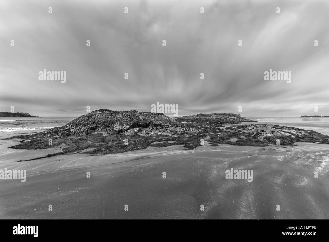 Low tide with raven, BW, Chesterman Beach, Tofino, British Columbia Stock Photo