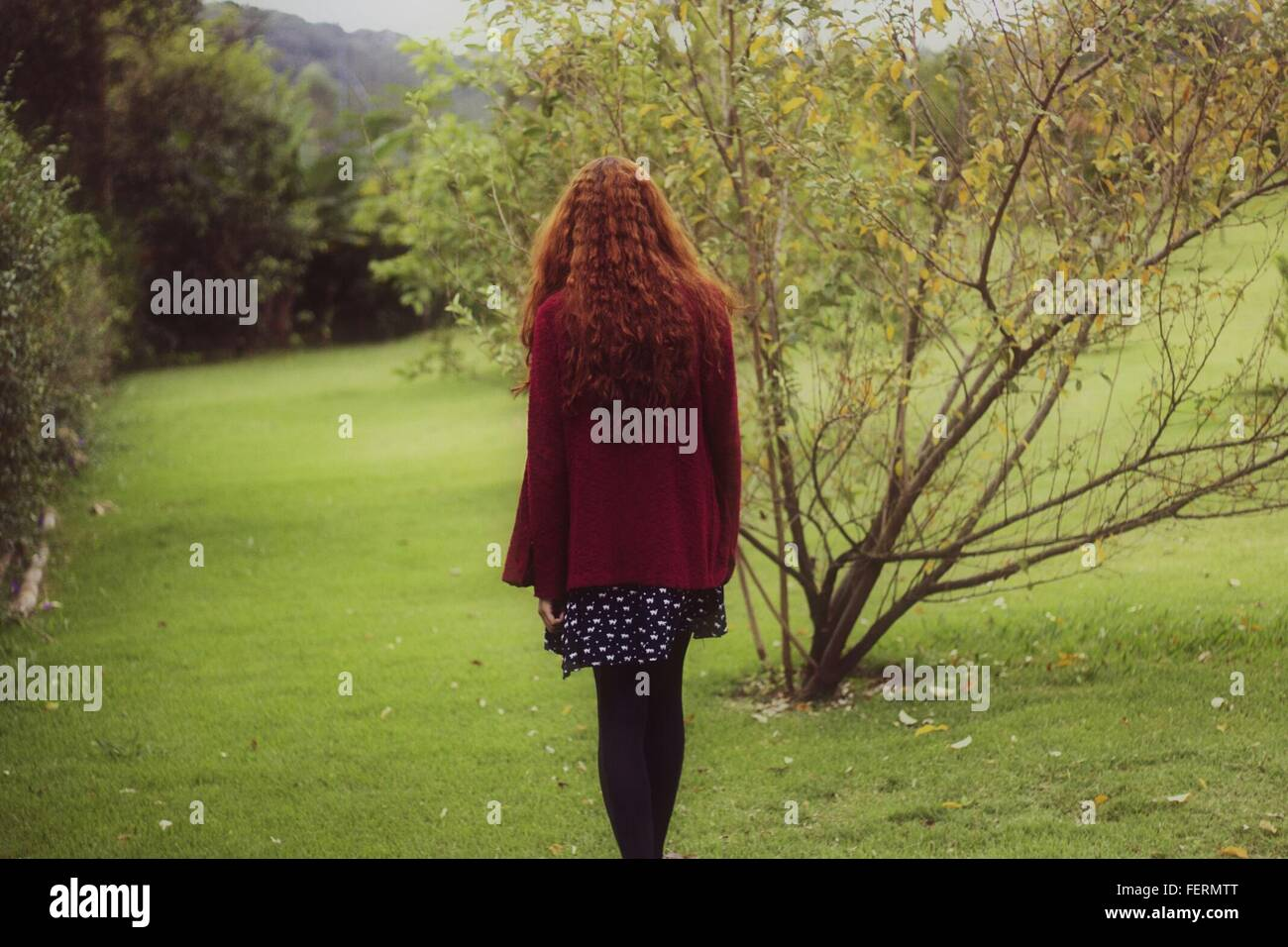 Rear View Of Woman In Park - Stock Image