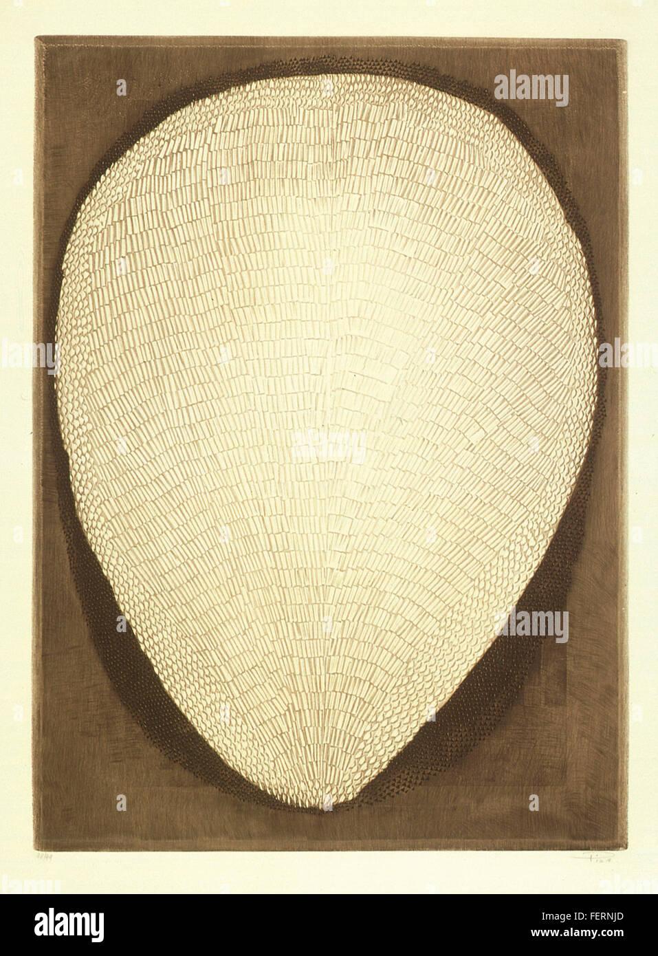 Fruto Autor: Arthur Piza Ano: 1998/1999 Técnica: Calcografia. Talho-doce Dimensão: 90cm x 64cm Fruto Autor - Stock Image
