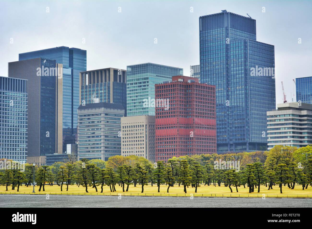 Multi-Colored Office Buildings - Stock Image