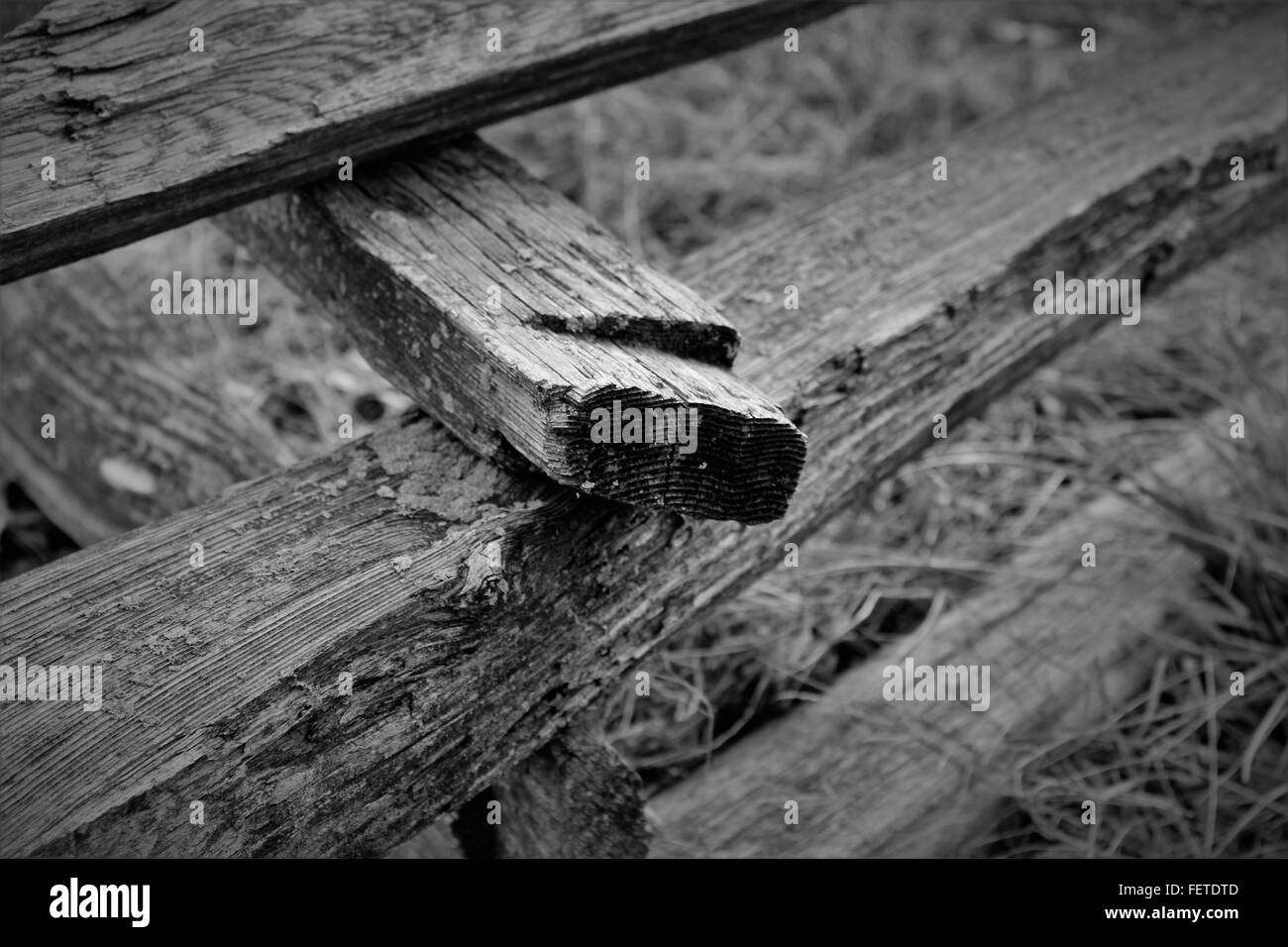 Wooden retaining wall - Stock Image