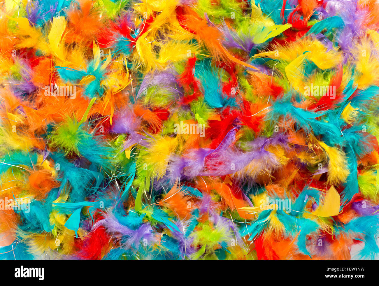 Colorful background of vivid brightly colored dyed soft fluffy bird feathers - Stock Image