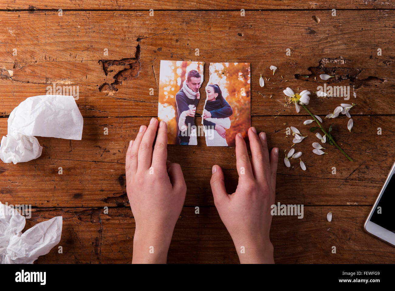 Unrecognizable sad woman holding torn picture of couple in love. - Stock Image