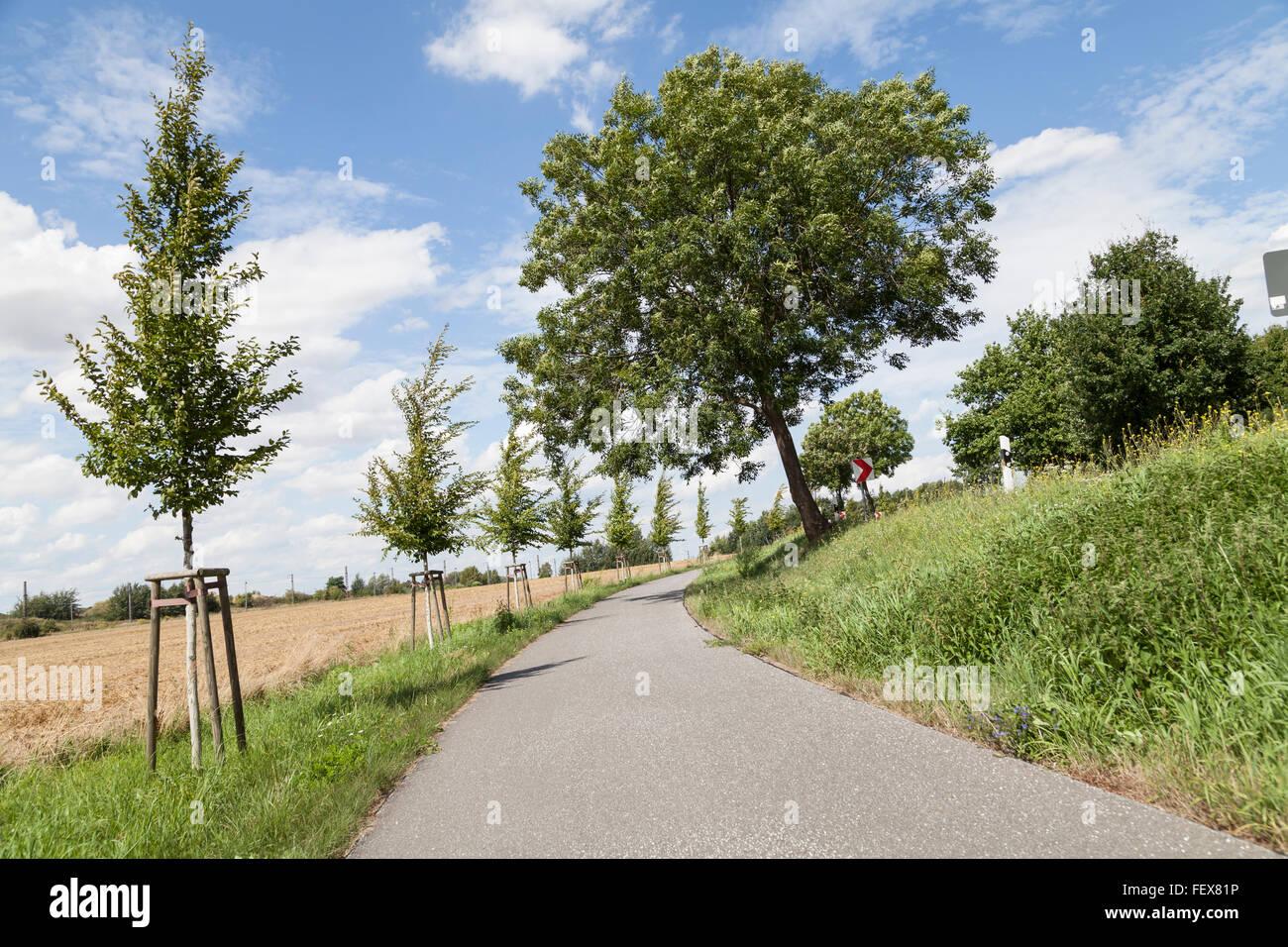 bycicle lane sloped - Stock Image