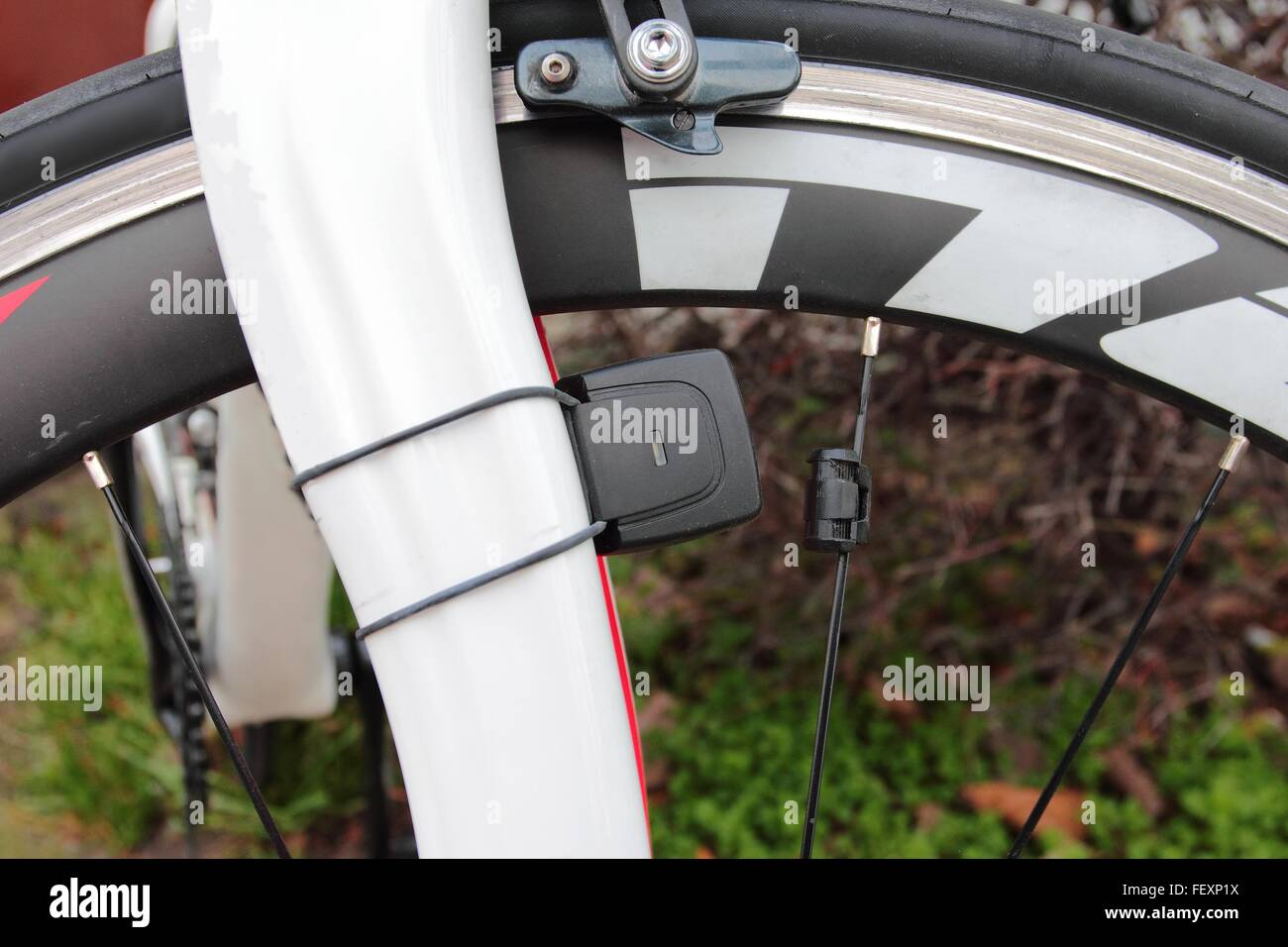 Detail of bike wheel with brakes and speed measure equipment - Stock Image