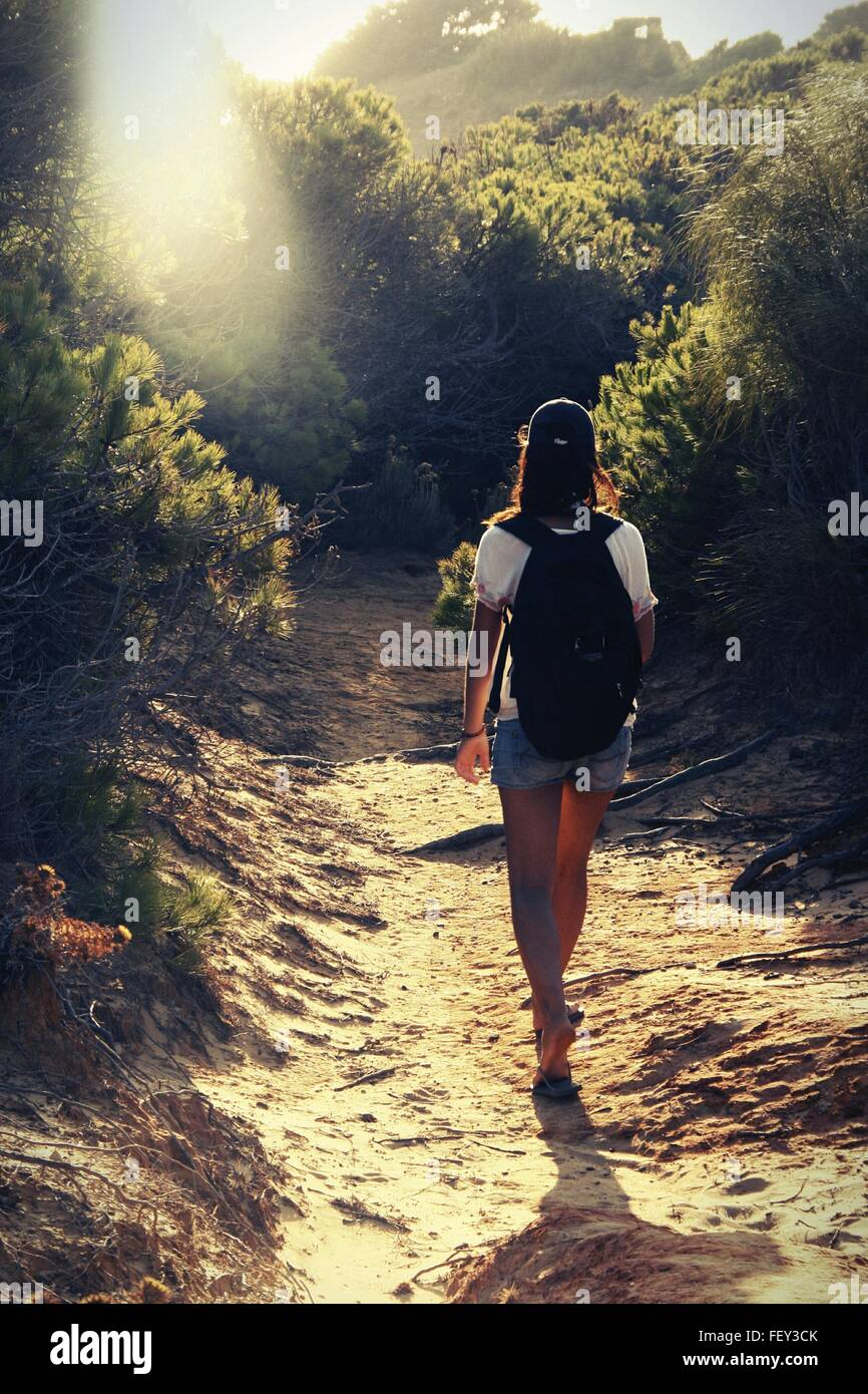 Rear View Of Woman Hiker On Dirt Road In Forest - Stock Image