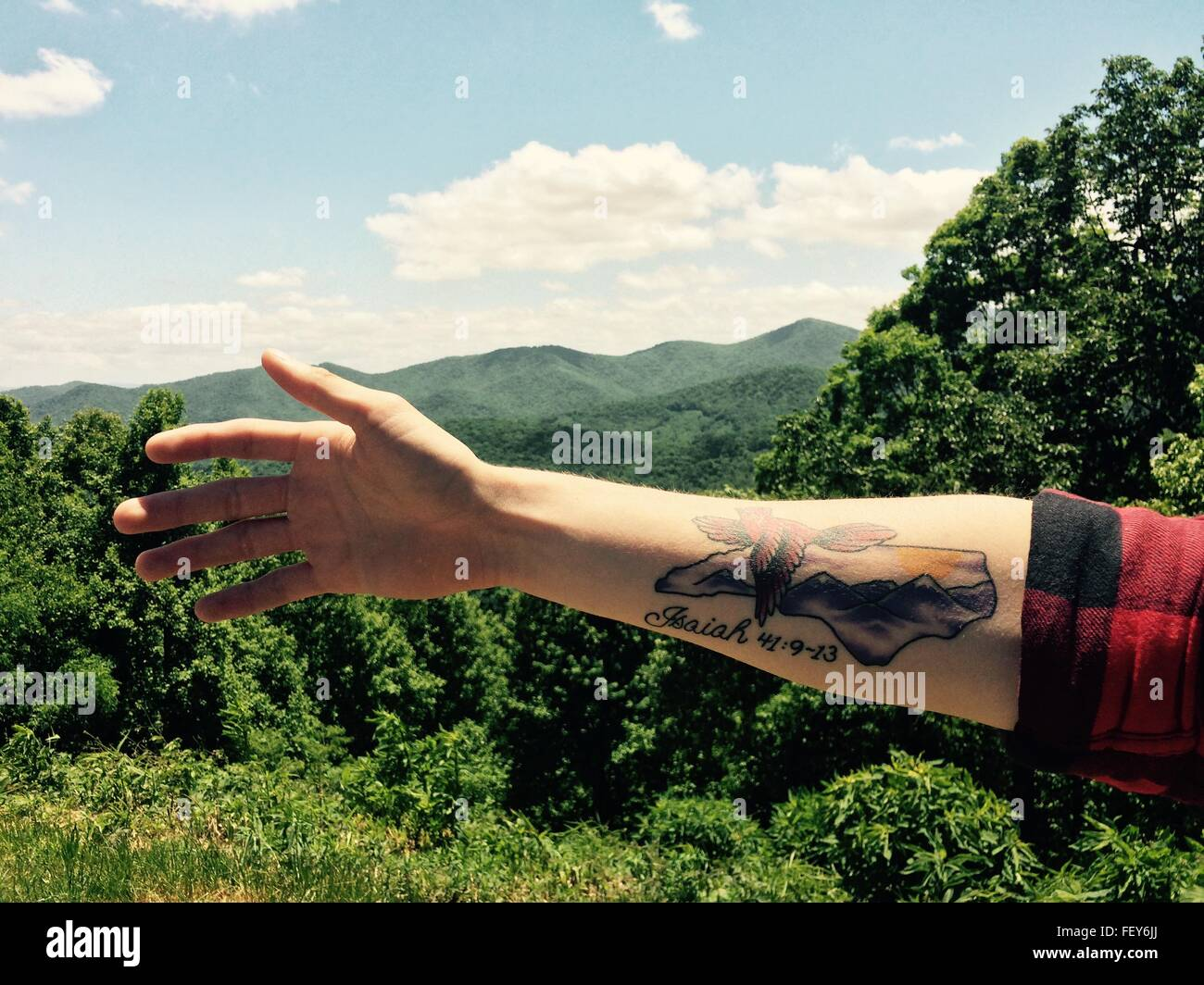 Arm And Landscape - Stock Image