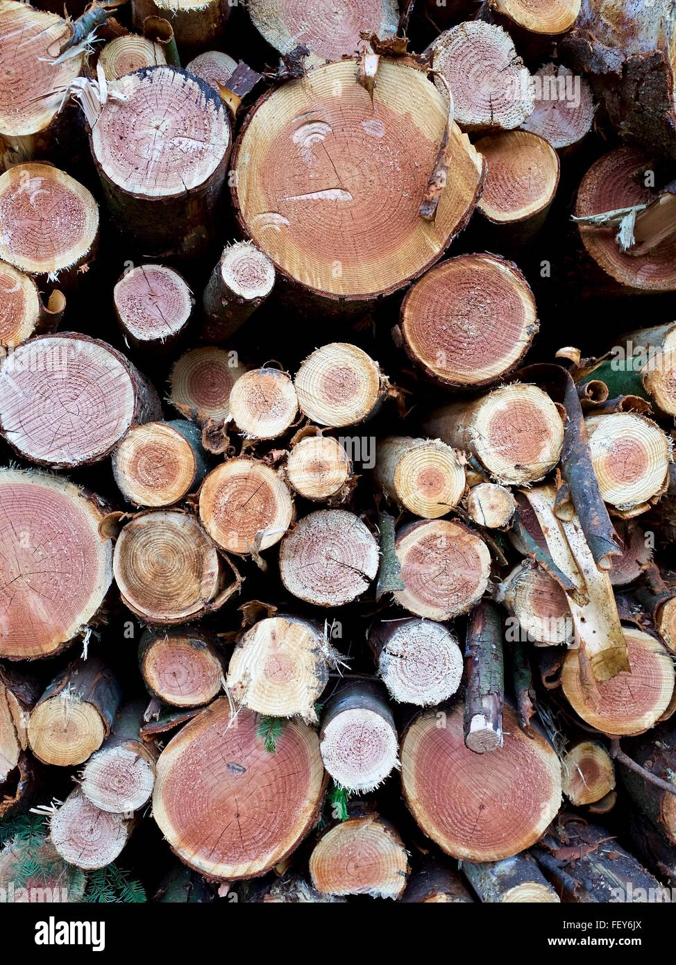 Full Frame Shot Of Logs - Stock Image