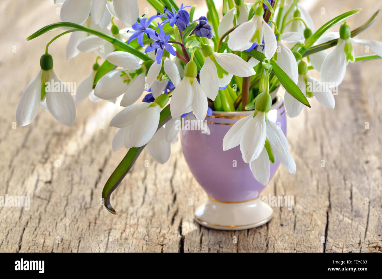 Bunch of Crocus and Snowdrops in a glass vase on old wooden table Stock Photo