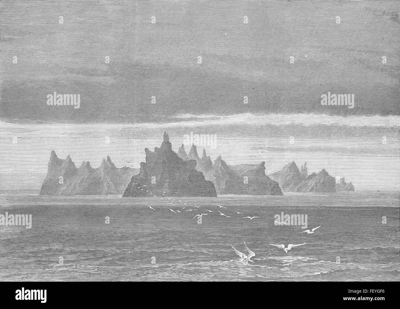 ANTARCTICA Possession Island, Crozet archipelago 1876. Illustrated London News - Stock Image