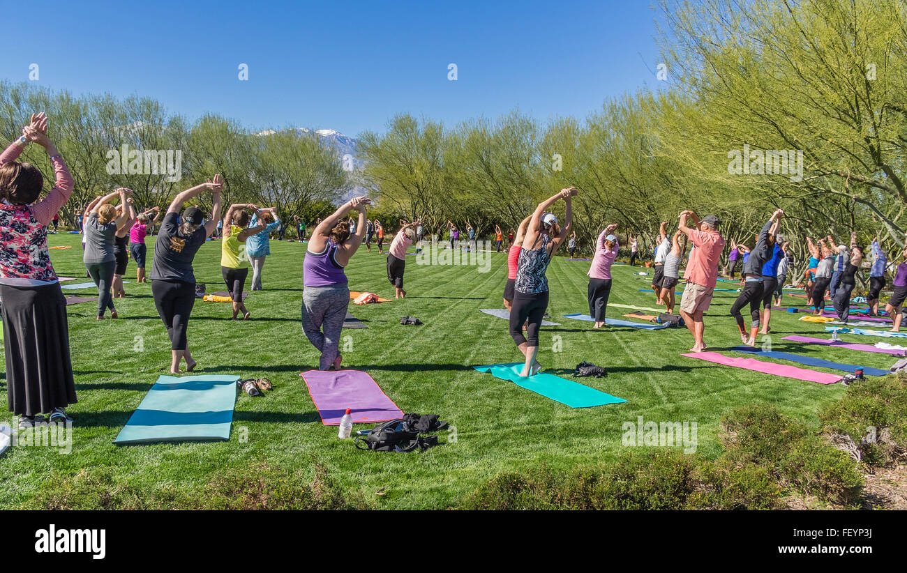 A large group of men and women of all ages go through their poses on ...