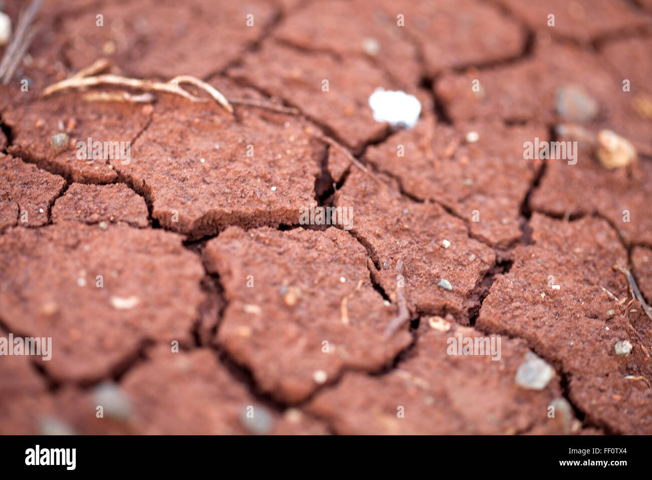 A close up of dry red cracked earth. - Stock Image